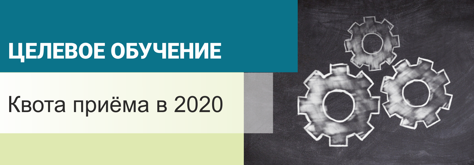 Установлена квота приёма в 2020 году на целевое обучение в вузы за счёт бюджетных ассигнований